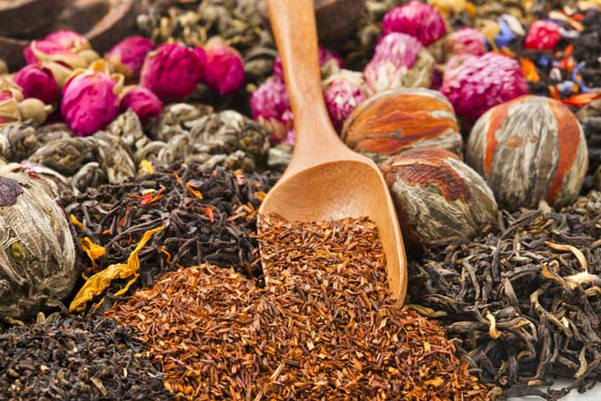 Types of Tea | Foodal.com
