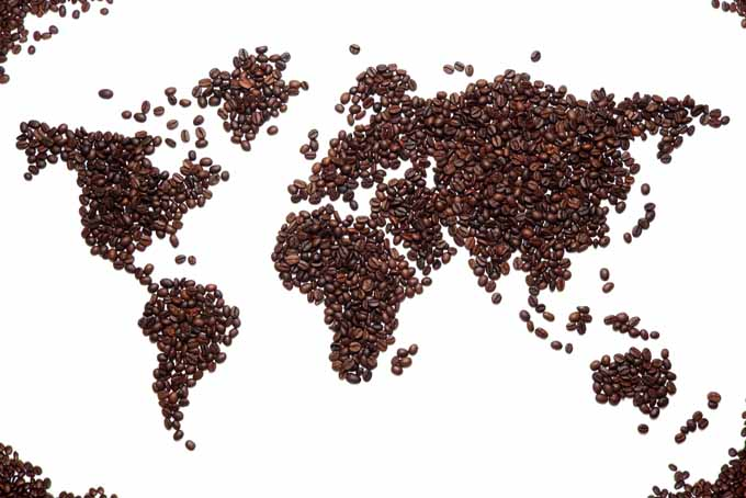 9 Exotic Regional Coffee Tastes For You to Try Today | Foodal.com