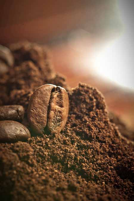 Freshly Ground Coffee | Foodal's Guide to Coffee Grinders