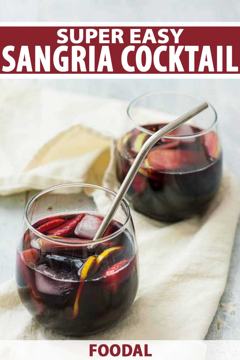 Close up of two glasses of easy sangria cocktails.