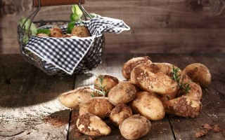 How to Store Potatoes for the Long Term | Foodal.com
