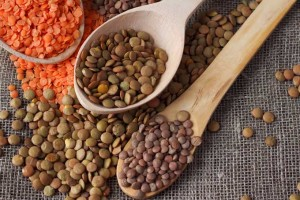 Lentils, an Alternative to Soy