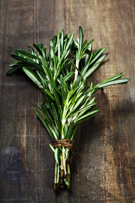 Rosemary Through the Ages | Foodal.com