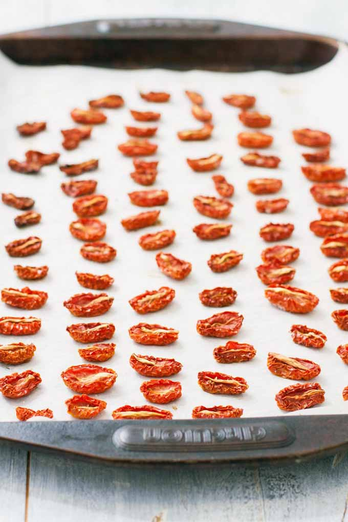 A baking sheet lined with parchment paper and topped with shriveled and golden-brown oven-dried grape tomatoes, arranged in rows.