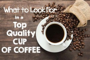 What to Look For in a Top Quality Cup of Coffee