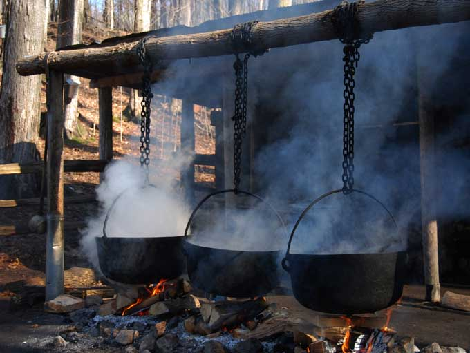 Boiling maple sap to reduce it to syrup | Foodal.com