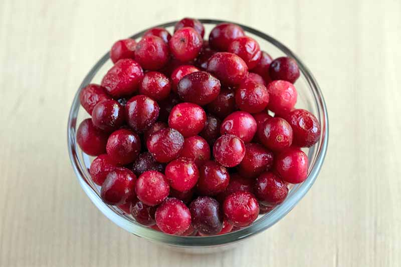 A small glass bowl is filled to the brim with whole fresh cranberries, on a beige background.