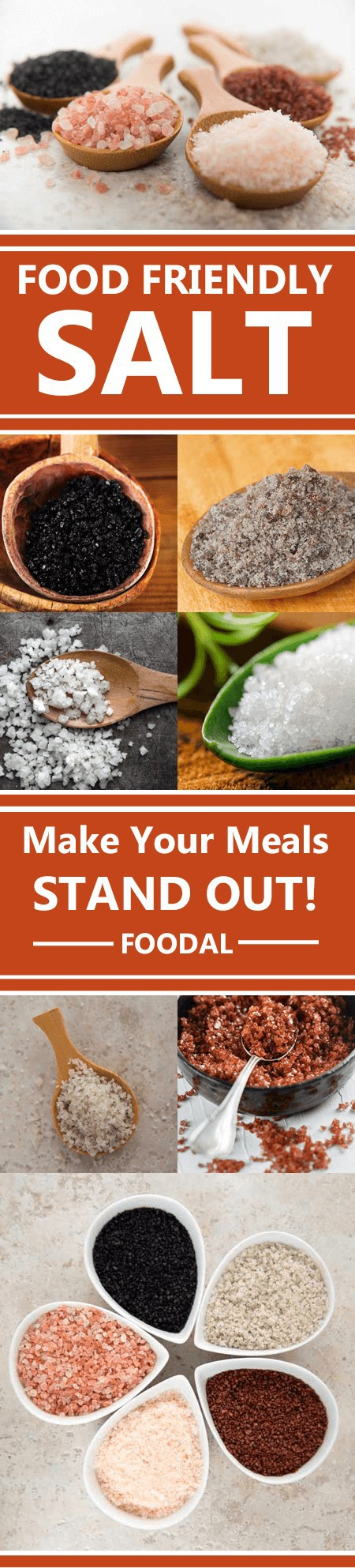 Once a precious commodity use as source of wealth, salt has dwindled into a basic blah white staple. However, most people don't realize that it is available in a huge array of flavors and colors, most of which deliver a wide range of trace minerals not found in your common table salts. Read more now at https://foodal.com/knowledge/paleo/pass-the-salt-please/