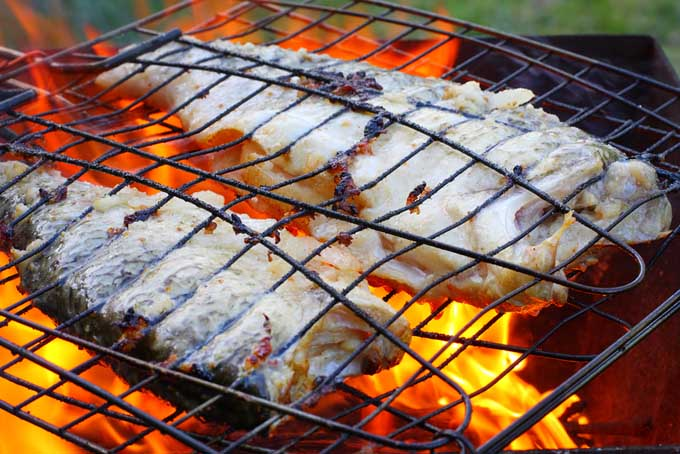 Grilling fish - healthy ways of cooking | Foodal.com