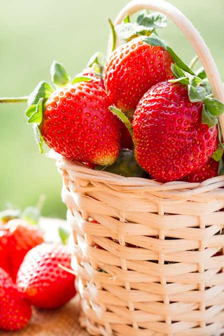 How to Choose, Use, and Store Strawberries | Foodal.com