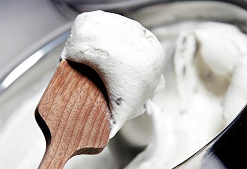 Frozen goodness from a Lello 4080 Musso Lussino 1.5-Quart Ice Cream Maker | Foodal.com