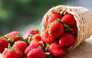 Make Strawberry Season Last All Year | Foodal.com