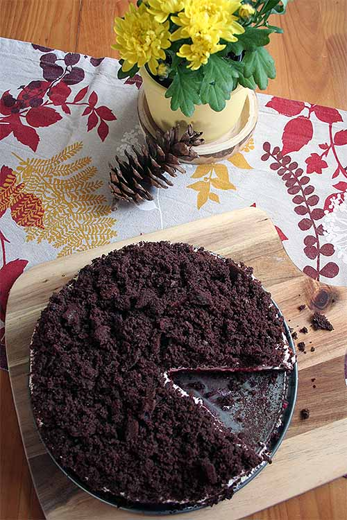 Don't make a mountain out of a molehill- unless there's chocolate involved! You'll love this cream, raspberry, and banana filled German cake. Get the recipe: https://foodal.com/recipes/desserts/this-german-mole-cake-will-have-you-digging-for-more
