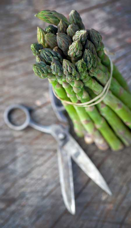 Green Asparagus Spears | Foodal.com