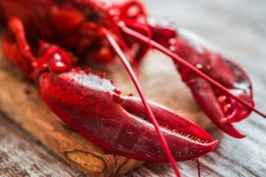 4 Delicious Ways to Cook Lobster