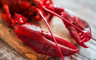 4 Ways to Cook Lobster   Foodal.com