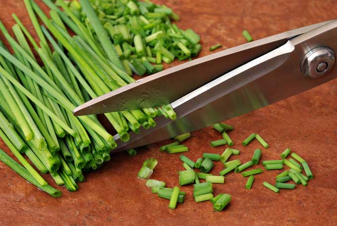Best Oil For Kitchen Knives