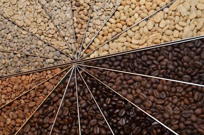 Brazil Coffee Roast Temperature