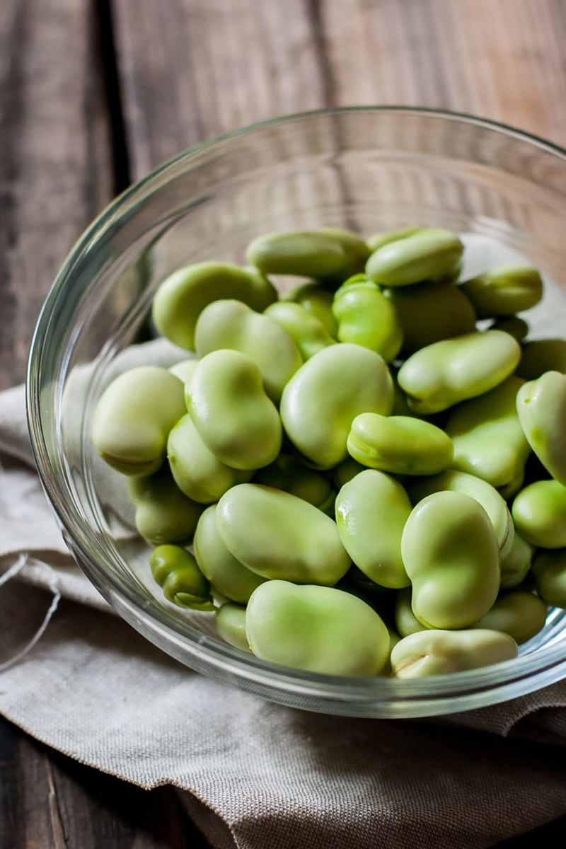 Vertical close-up image of a glass bowl with fava beans.