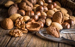 Foodal's Guide to the Best Nutcrackers and Reviews | Foodal.com