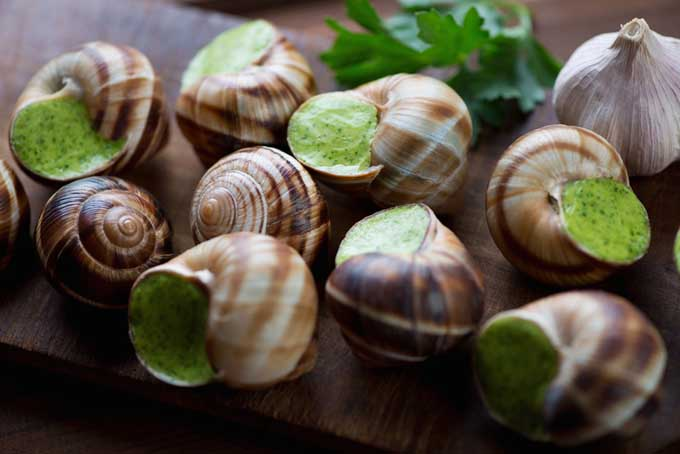 How to Prepare and Serve Escargot | Foodal.com