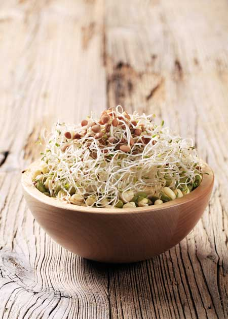 Lentil and mung bean sprout salad| Foodal.com