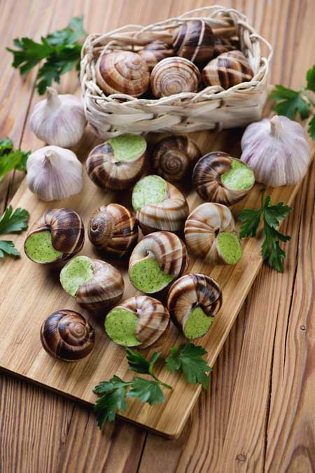 Preparing Escargots de Bourgogne | Foodal.com