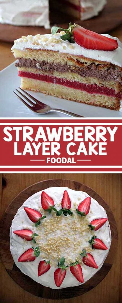 This cake boasts a succulent layer of strawberry purée and a second of chocolate cream. Besides looking totally scrumptious, it is also quite simple to create.