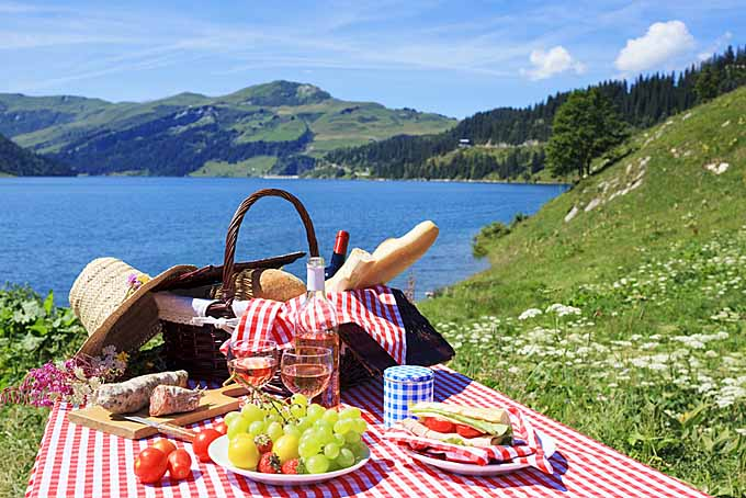 Best Food To Take On A Picnic