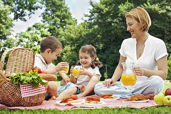 Choosing the Best Picnic Basket for your family | Foodal.com