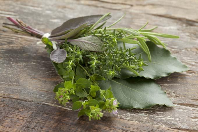 Herb Garni | Foodal.com