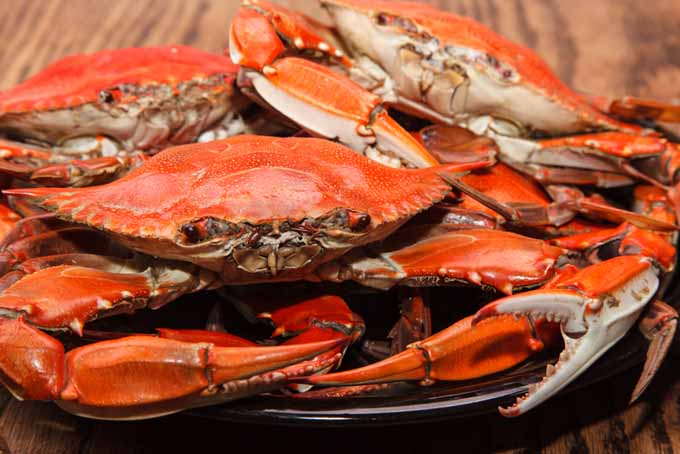 How To Buy Clean And Cook Crabs The Right Way Foodal
