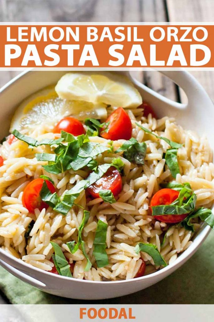 A bowl of orzo pasta salad with basil, lemon, and tomatoes, on a wood background, with orange and white text.