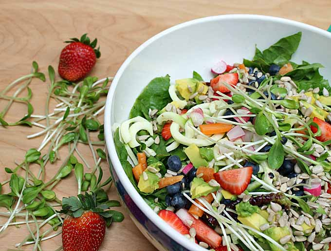 Recipe for Spiralized Salad | Foodal.com