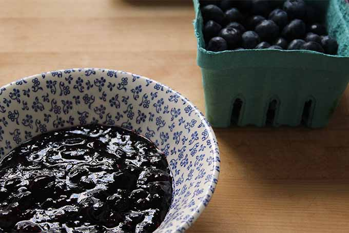 Blueberries and Jam | Foodal.com