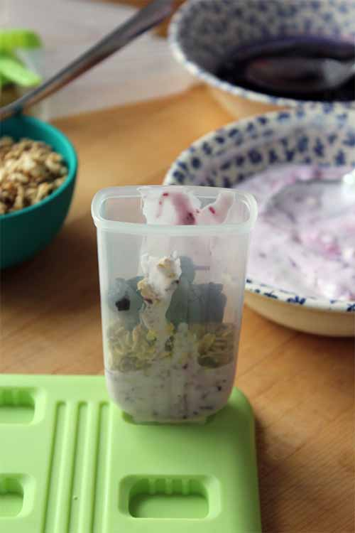 Love the flavor of fresh blueberry? These are the popsicles for you! Learn to make your own: https://foodal.com/recipes/breakfast/frozen-yogurt-popsicle-with-oats-and-blueberry-jam/