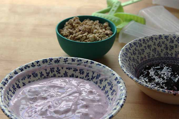 Yogurt, Blueberry Jam & Granola | Foodal.com