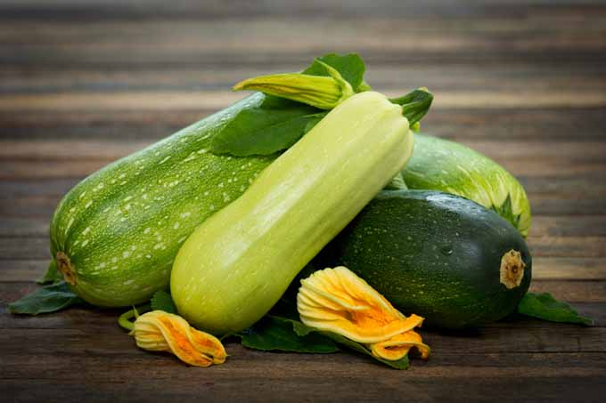 11 Tasty Ideas for Summer Squash | Foodal.com