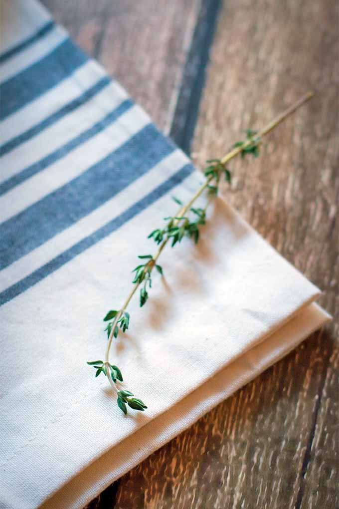A sprig of fresh thyme on a folded blue and white striped cloth, atop a brown wood background.