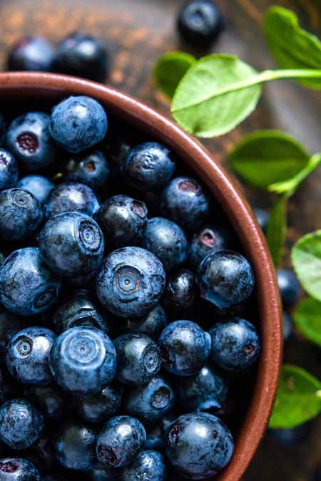 Blueberries - A heatlhy and tasty way to get your nutrients - recipe ideas included | Foodal.com