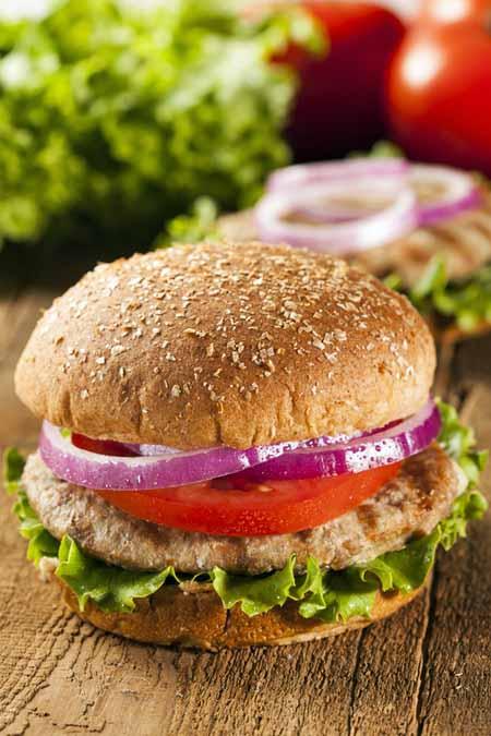 Homemade Turkey Burger Recipe   Foodal.com