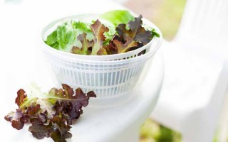 Salad Spinners - 10 of the Best on the Market | Foodal.com