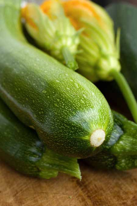 Ever wonder what to do with all those tons of zucchinis even tiny gardens produce? One way to be creative: make them into pickles. Learn to make them here.