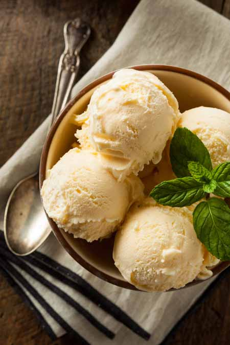Vanilla homemade ice cream using the Cuisinart ICE-100 Compressor model maker | Foodal.com