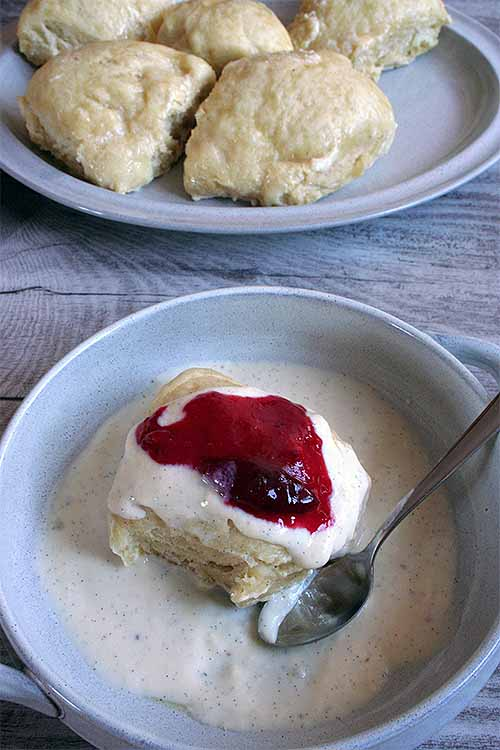 The best southern german dampfnudel yeast dumpling recipe foodal whether you serve them for dessert or make them a meal german dampfnudeln are simple forumfinder Images