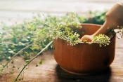 How to Choose and Use the Best Mortar and Pestle Set