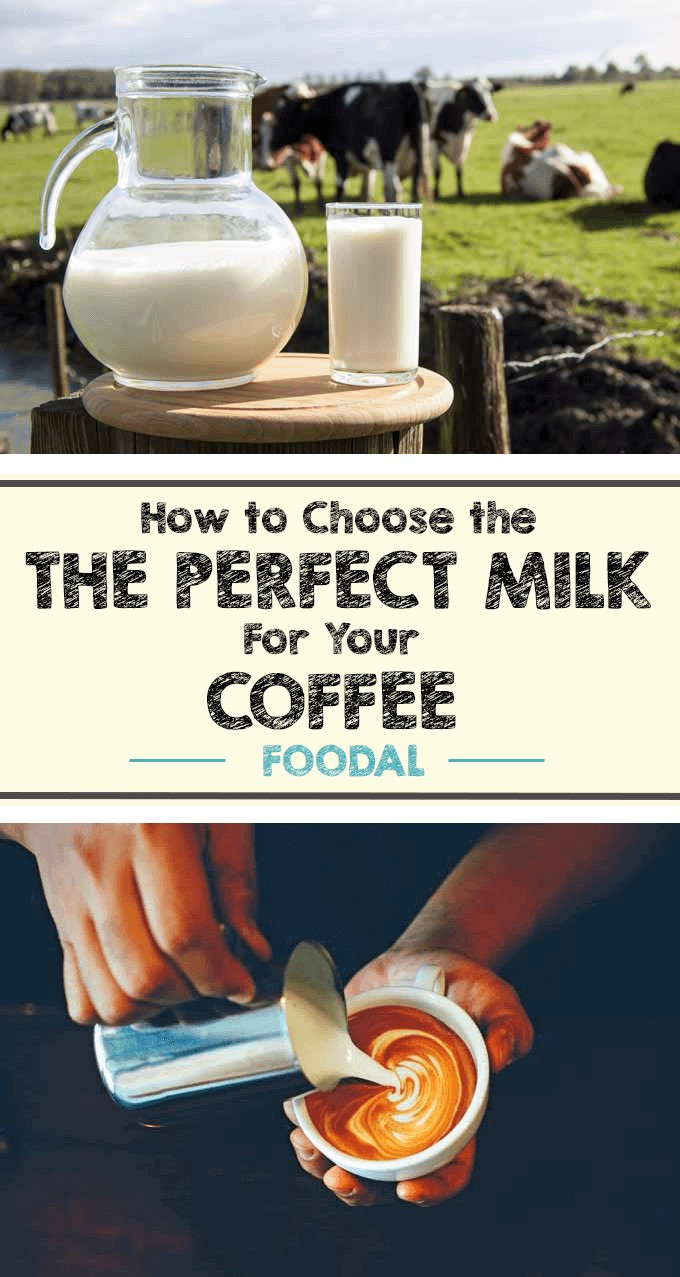 Looking to make your lattes, cappuccinos, or even your regular cup of Joe even tastier? Improve your game by using better dairy products. All milk is not created equal. Read more on introducing the best dairy products into your coffee based beverages now. https://foodal.com/drinks-2/coffee/guides-coffee/the-perfect-milk/