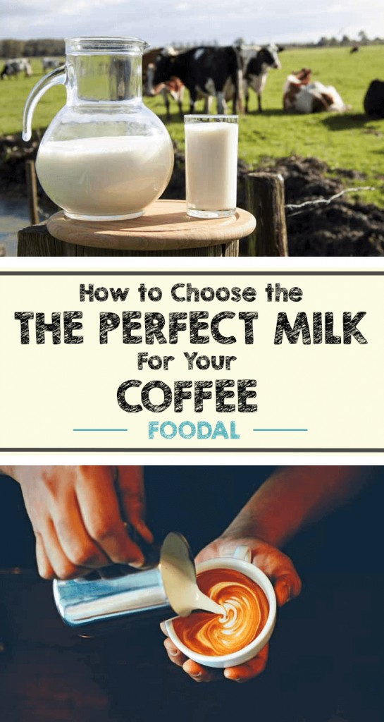 Looking to make your lattes, cappuccinos, or even your regular cup of joe even tastier? Improve your game by using better dairy products. All milk is not created equal. Read more on introducing the best dairy products into your coffee-based beverages now. https://foodal.com/drinks-2/coffee/guides-coffee/the-perfect-milk/