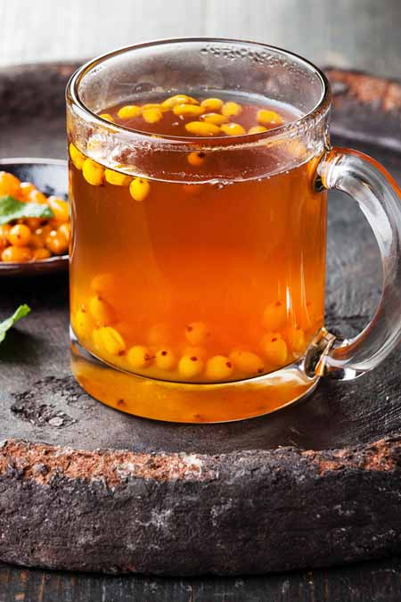 Sea Buckthorn Juice-Tea: A lesser known Powerfood | Foodal.com