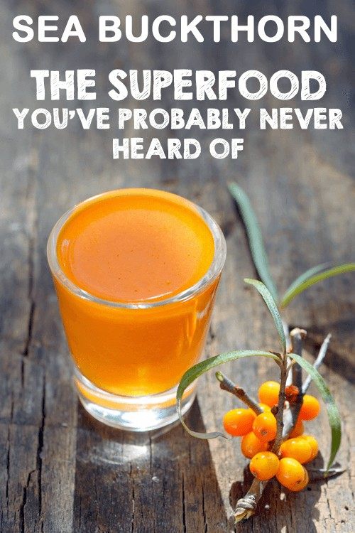 Sea Buckthorn:- The Superfood You've Probably Never Heard Of | Foodal.com